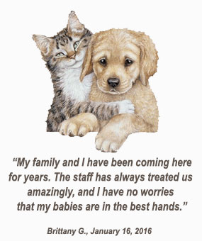 Veterinarian Services with Tender Loving Care for Your Companion Animals and Exotic Pets