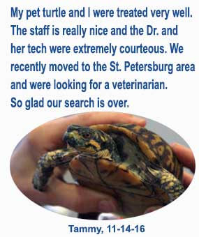 East Bay animal hospital of largo 33771, companion animals, exotic pets