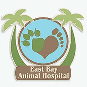 appointments-veterinarian-east-bay-animal-hospital-largo-florida