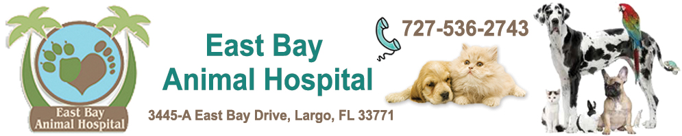 East Bay Animal Hospital - vet in Largo Fl, vet office near Tri-City Plaza